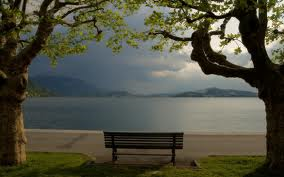 bench and lake